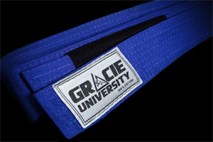 Technical Blue Belt